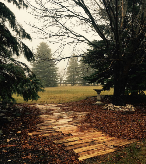 Wood Path to the Ranch